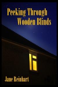 Jane_Reinhart_-_Peeking_Through_Wooden_Blinds_-_Proposed1
