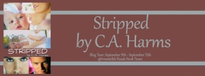 Banner - Stripped