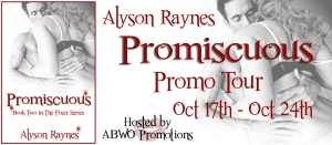 Promiscuous Tour Banner copy